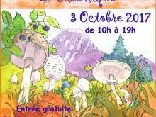 Exposition mycologique et botanique le mardi 3 Octobre 2017 de 10h à 19h